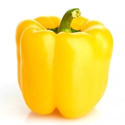 Favolar yellow