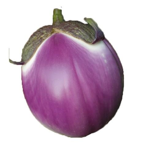 Violetta Parlemitana