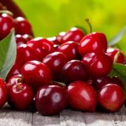 Fruit Me
