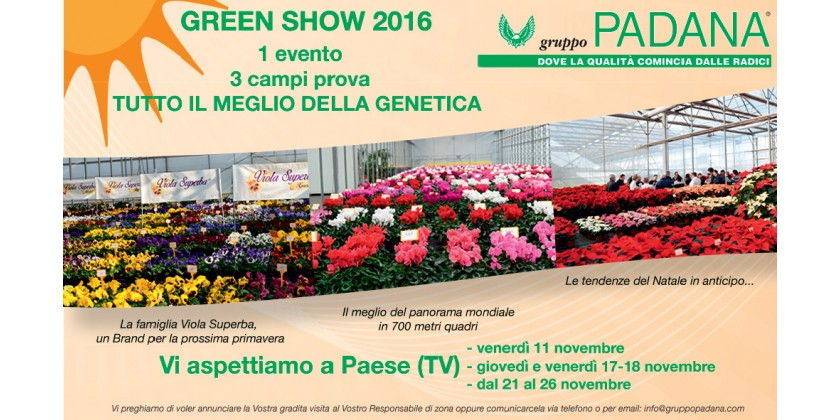GREEN SHOW 2016